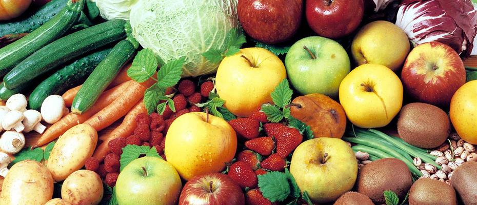 Comune di Trento: concorso di grafica, logo produzioni agricole