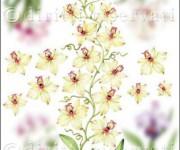 carta decoupage con orchidea gialla