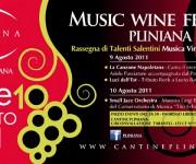 Campagna pubblicitaria wine festival