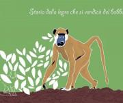 Storia della lepre che si vendicò del babbuino - illustrazione per un racconto di Gianni Bauce