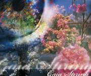 Adv Gaia Primavera
