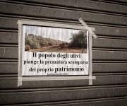 Daniele Panareo Fotografo matrimonio  Lecce - REPORTAGE-1081
