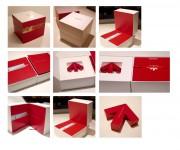 Regione Emilia-Romagna brand kit