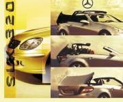 Adv Mercedes SLK