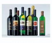 vino e oilo monte schiavo