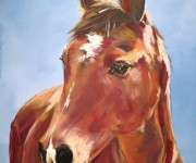 Portrait of a beautiful fulvous horse