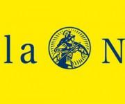 Logo stella nova