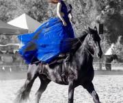 Spettacolo-equestre