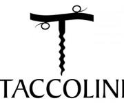 Taccolini