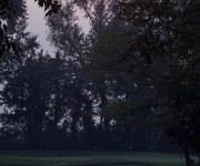green al tramonto