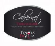 grafica per etichetta vino cabernet