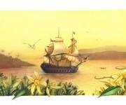 la nave di vaniglia