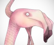 endless-flamingos_2437