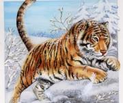 Tigre / Fleurus