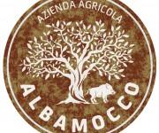 logo azienda agricola Albamocco 01
