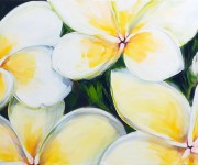 Plumerie per una ragazza che si chiama come un fiore