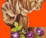 Gatto e campanelle