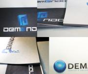 DEMANDO- proposte di logo per l'azienda informatica DEMANDO