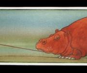 ippopotamo non cammina
