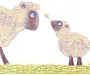 2 ovejas