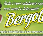 Annuncio pubblicitario per quotidiano - BERGOTTO bibita al bergamotto