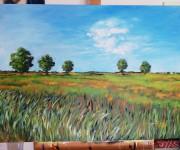 Paesaggio - Riserva parco agricolo Milano sud