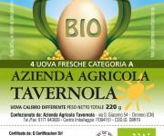 Pack BONTAOVO Tavernola