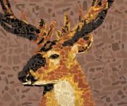 cervo-annuario-accessori-2011dettaglio