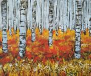 Incanto d'autunno - Sottobosco di betulle