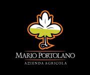 Logo per azienda vitivinicola 02 (2)