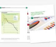 Artigiancassa - Annual report