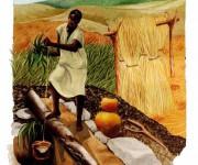 AFRICA - Donna al pozzo
