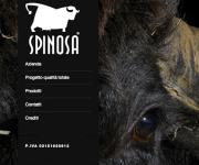 spinosa-copertina