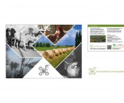 Studio e realizzazione cartolina