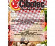 brochure cibotec 01 (2)