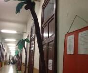 palme nei corridoi scolastici