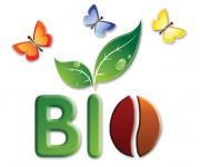 logo caffè biologico