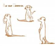sid the meerkat_1