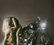 ALE_3483_3_Harley Davidson