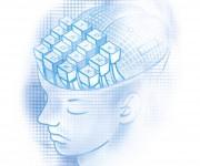 Illustrazione Xenia--Testa-cyber-donna