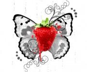 strawfly