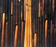 Termoemergenze, 2006
