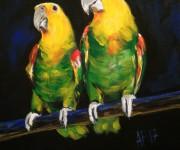Moonlight serenade - romantic parrots