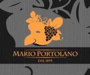 Logo per azienda vitivinicola 12