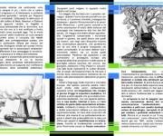 brochure-dentro-tesi