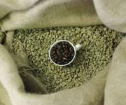 Caffe' grezzo e tostato