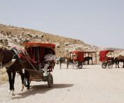 Carrozze per i turisti - Petra