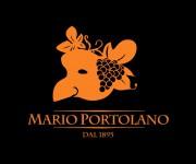 Logo per azienda vitivinicola 01