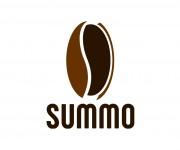 logo summo 01 (3)