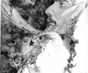 The hawk and the falconer